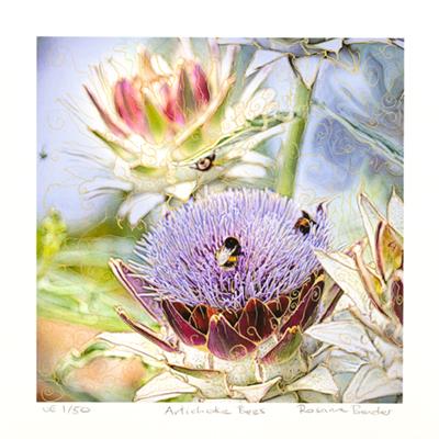 Artichoke Bees